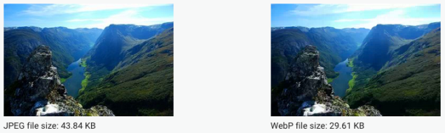 Visually identical images in JPEG and WebP format with their respective sizes.